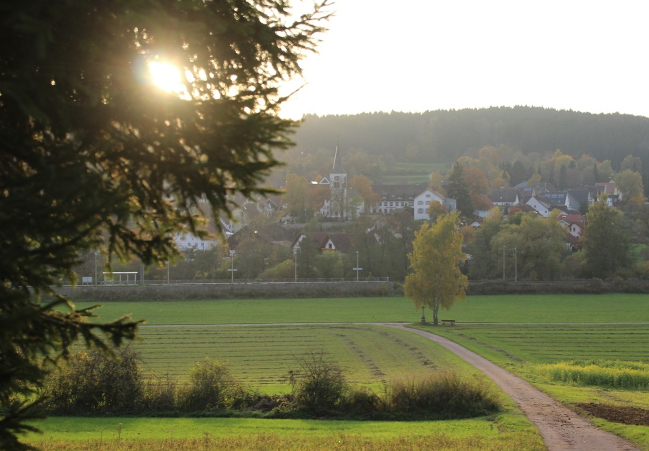 Дарим отдых в Германии
