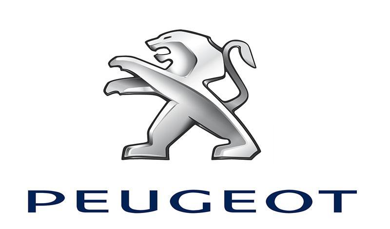 Peugeot проверит стекло задней двери на 107 модели