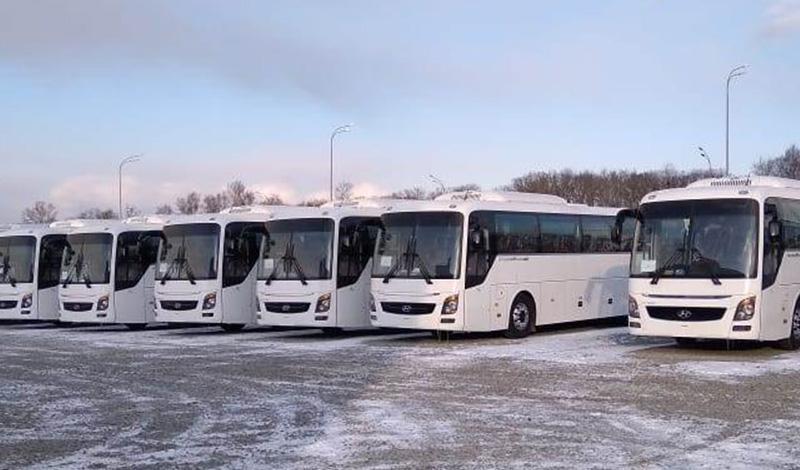 На Универсиаду 2019 Hyundai Truck and Bus Rus поставит 30 туристических автобусов